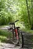 自行车山行迹 库存图片