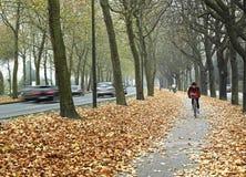 自行车布鲁塞尔路径 免版税库存图片
