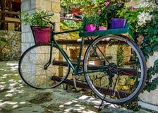 自行车开花老 免版税库存照片