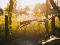 自行车手马鞍室外夏天草甸调遣日出 库存图片