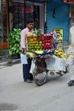 自行车果子商店或蔬菜水果商在街道上在Thamel市场上 免版税库存图片