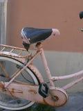 自行车桃红色三文鱼 库存图片
