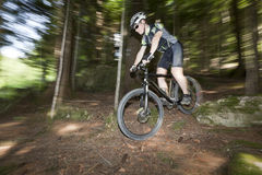 自行车森林 免版税库存照片