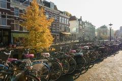 自行车沿Oude Gracht在历史的中心停放了  免版税图库摄影