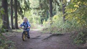 自行车的一个小女孩通过秋天森林乘坐 股票视频