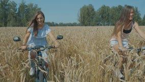 自行车的女朋友在麦田 影视素材