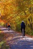 自行车秋天行程 库存图片