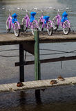 自行车租金 免版税库存照片