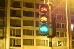 自行车红绿灯夜 库存图片