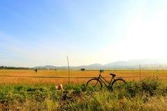 自行车老牌 免版税库存照片