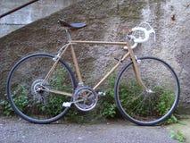 自行车老路 库存图片