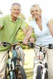 自行车耦合成熟骑马 库存图片
