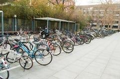 自行车行  免版税图库摄影