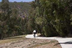 自行车赛车道 库存照片