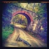 自行车足迹和桥梁 库存图片