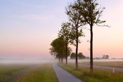 自行车路径在有薄雾的早晨 免版税图库摄影