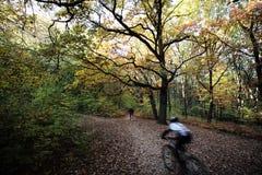 自行车车手在秋天公园 免版税库存图片