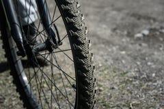 自行车车轮关闭在路背景  免版税库存图片