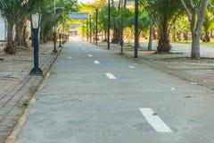 自行车车道和自行车街灯 免版税库存照片
