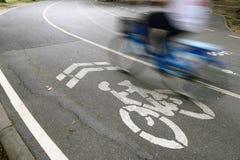 自行车车道在公园 免版税库存图片