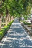 自行车车道在城市 图库摄影