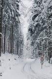 自行车车道在forrest的冬天与减速火箭的退色的神色 免版税库存图片