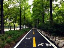 自行车车道标志 免版税库存照片