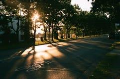 自行车车道的日出 免版税图库摄影