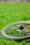 自行车轮子 库存照片