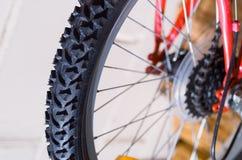 自行车轮胎踩细节 免版税库存照片