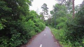 自行车道路在森林里 股票视频