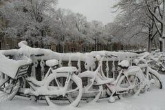 自行车阿姆斯特丹 免版税库存图片