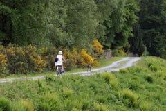 自行车骑士女性 库存图片
