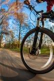 自行车骑马在一个城市公园在一可爱的秋天/秋天天 免版税库存照片