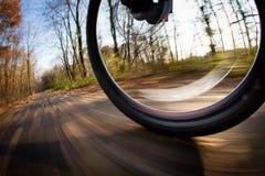 自行车骑马在城市公园 免版税库存图片