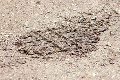自行车,拖拉机,挖掘机,汽车,在泥泞的足迹的汽车轮胎轨道 泥和轮子在路追踪在雨以后 免版税库存照片