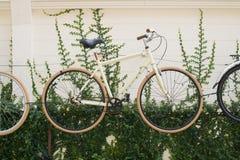 自行车结冰齿轮 库存图片