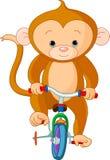 自行车猴子 库存图片