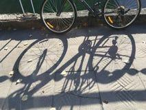 自行车阴影 库存图片