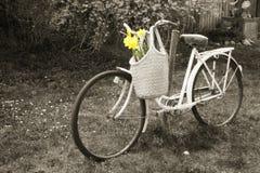 自行车 免版税库存图片