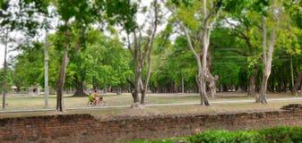 自行车througj历史公园 库存图片