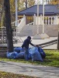 自治市的工作者在公园收集叶子 妇女社会工作者取消了叶子 免版税库存照片