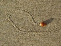 臭虫做在沙子画 免版税库存图片