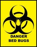 臭虫危险危险等级 免版税库存图片