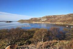 舌头海湾,苏格兰 免版税库存图片