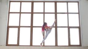 舒展和灵活性的概念 做舒展在白色内部的窗口附近的运动服的年轻女人 股票录像