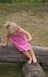 舒展在日志的小女孩 库存图片