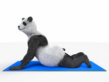 舒展锻炼不同的姿势的要人字符动物熊熊猫瑜伽 库存图片