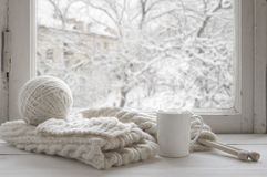 舒适冬天静物画 免版税图库摄影