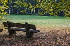 舒适和绿色公园在历史地方附近的德国 bossies 步行的完善的地方狭窄的小径的 免版税库存照片